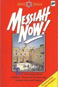 Messiah Now David Zeidan 1