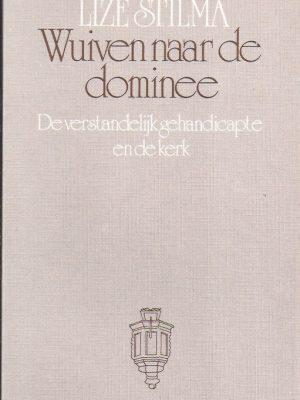 Wuiven naar de dominee-de verstandelijk gehandicapte en de kerk-Lize Stilma-902660792X