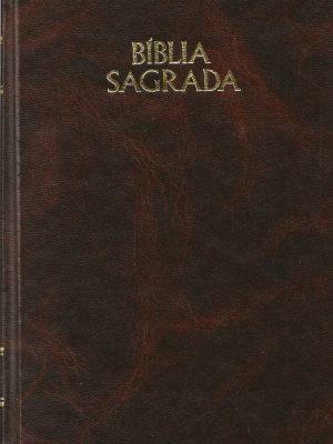 a-biblia-sagrada-joas-ferreira-a-dalmeida