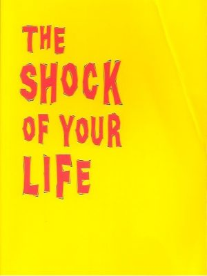 The shock of your life-Adrian Holloway-9055602205-9789055602209