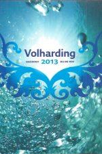 Volharding 2013-Dagboek bij de HSV-9088970467-9789088970467