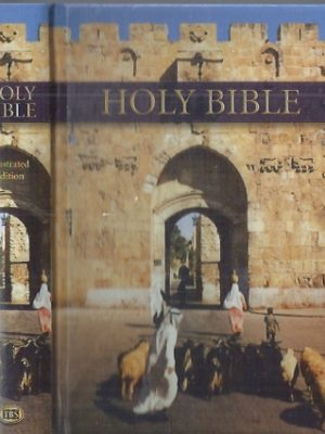 Holy Bible-Royal Ruby Illustrated-9781862283091