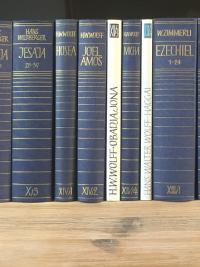 Biblischer Kommentar Altes Testament Neukirchener serie
