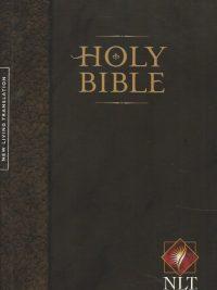Holy Bible New Living Translation 2 0 Worldwide Edition 1414307535 9781414307534